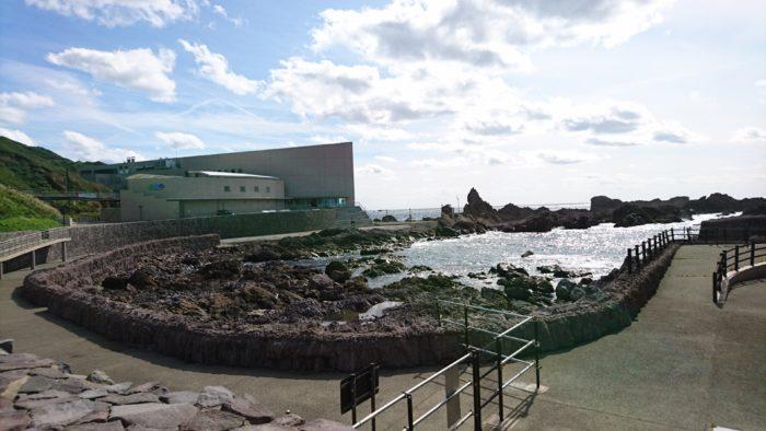 男鹿水族館GAOの外観。ごつごつした岩に波が打ち付けている。