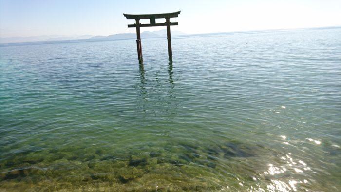 白鬚神社の鳥居。琵琶湖に浮かぶようにたっている。
