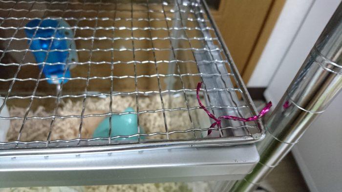 ハムスターのケージ。水槽の上に金網を置いて針金でとめました。