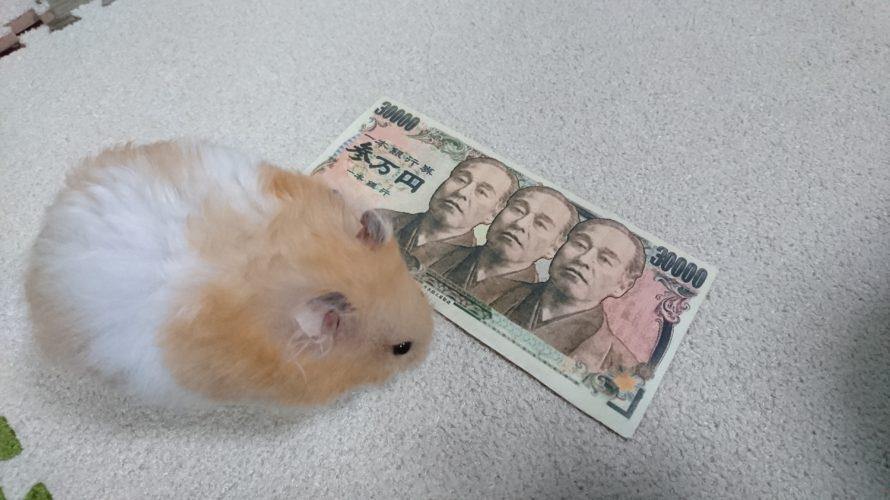 ハムスターと3万円(マジック道具)