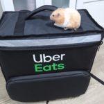 Uber Eatsの配達用カバンの上にハムスターがのっている